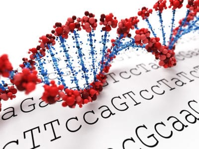 DNA double helix with red strands and blue bases against a white background with black letters
